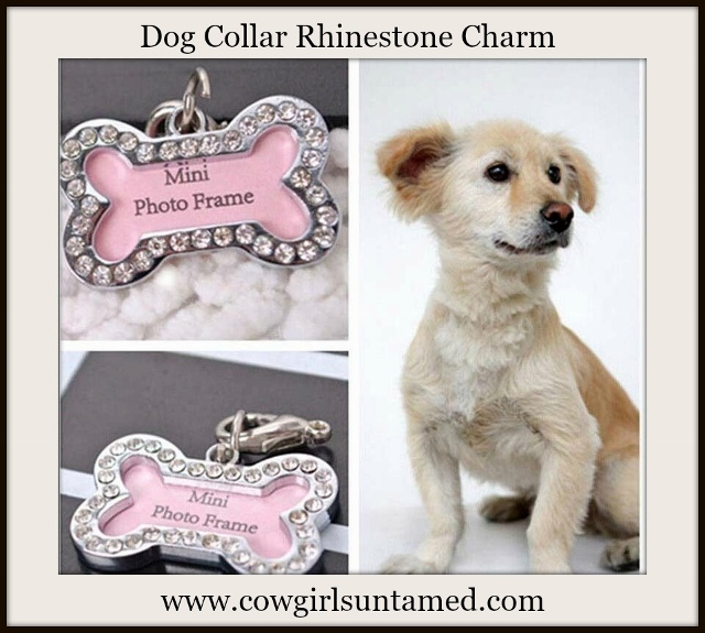 BLINGIN' BESTIES Rhinestone Bone Frame Dog Collar Charm