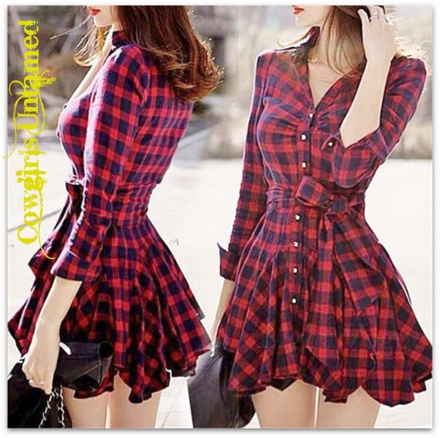 WILD FLOWER DRESS Red N Black Plaid Long Sleeve Belted Chiffon Tunic Top Mini Dress