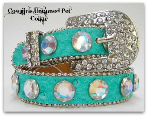 COWGIRL PET STYLE Rhinestone & Crystal Silver Buckle Aqua Ostrich Leather Dog Collar