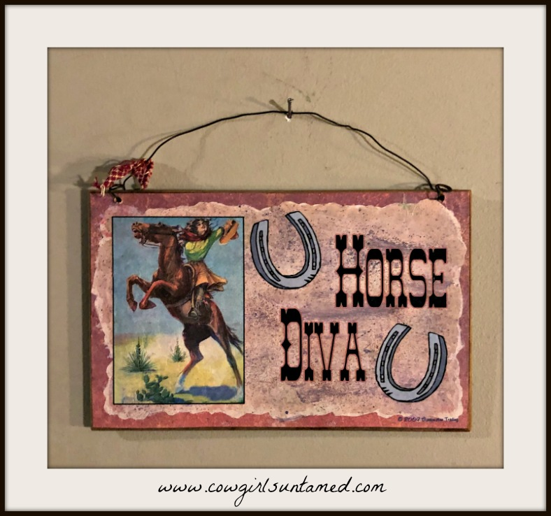 "HORSE DIVA DECOR Small Vintage Cowgirl N' Horse ""Horse Diva"" Horseshoe Graphic Sign"