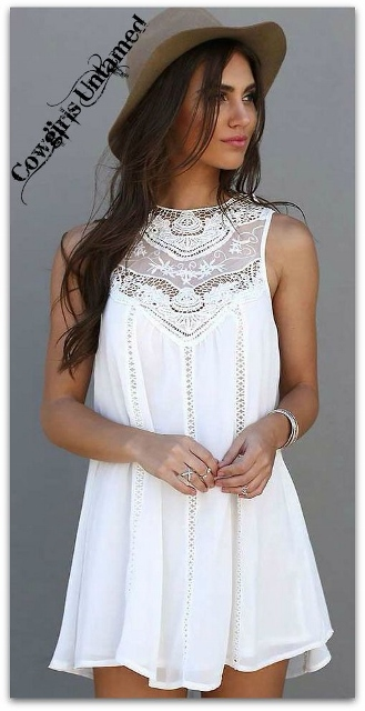 WILDFLOWER DRESS White Sleeveless Lace A-Line Boho Mini Dress